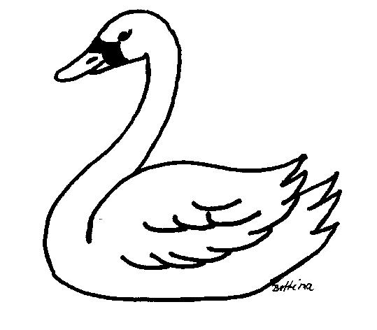 cisne christian singles The heart of christian science is love christian science is about feeling and understanding god's goodness christian science is based on the bible and is explained in science and health with key to the scriptures and other writings by mary baker eddy.